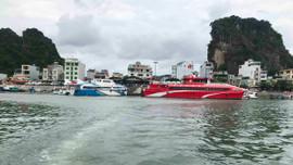 Quảng Ninh dừng cấp phép cho các phương tiện thủy ra khơi từ 16h ngày 12/6