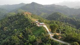 Quy định thẩm quyền chấp thuận chủ trương cho chuyển mục đích đất rừng phòng hộ
