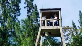 Thừa Thiên Huế: Bảo vệ rừng và phòng cháy, chữa cháy rừng trong mùa nắng nóng