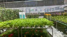 TP.HCM đẩy mạnh công nghệ sinh học, tự động hóa xử lý chất thải trong nông nghiệp công nghệ cao