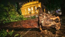 Đức, Pháp và Thụy Sĩ chịu thiệt hại nặng nề do bão mạnh đổ bộ