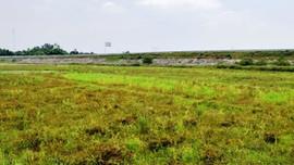 Đà Nẵng: Tháo gỡ vướng mắc cho hàng trăm ha đất nông nghiệp không sản xuất được