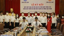 Bảo hiểm xã hội Việt Nam và Tổng cục Thuế chia sẻ dữ liệu và phối hợp công tác