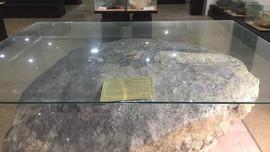 Sưu tầm 1.300 mẫu địa chất tại 5 tỉnh