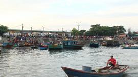 Nghệ An: Thực hiện bảo tồn, bảo vệ và phát triển nguồn lợi thủy sản