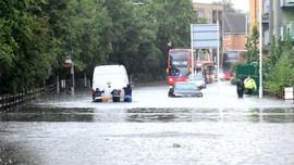 Thiếu hụt không gian xanh khiến lũ lụt gia tăng