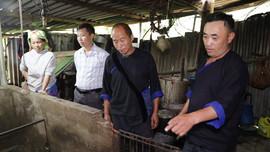 Già làng Giàng Vàng Ly giúp người dân thay đổi phong tục tập quán lạc hậu