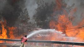 8 người Thổ Nhĩ Kỳ thiệt mạng vì cháy rừng nghiêm trọng