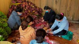 Đồng bào vùng sạt lở Nam Trà My gửi hàng tấn nông sản vào vùng tâm dịch TP.HCM