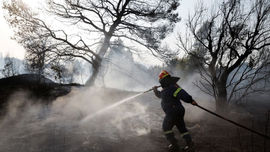 Hy Lạp đối mặt với 81 vụ cháy rừng do nắng nóng gay gắt