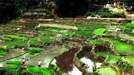 Phát triển bền vững vùng lòng hồ Thủy điện Sơn La - Bài 3: Chính phủ tiếp tục hỗ trợ đồng bào vùng tái định cư