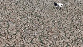 Hạn hán phá vỡ kỷ lục ở Chile - bằng chứng cho sự nóng lên toàn cầu