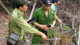 Đakrông (Quảng Trị): Phát triển tài nguyên rừng bền vững vùng dân tộc thiểu số