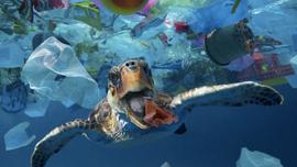 Việt Nam chủ động tham gia xây dựng Thỏa thuận toàn cầu về ô nhiễm nhựa đại dương