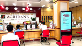 Agribank đã giải ngân hơn 116 ngàn tỷ đồng và 122 triệu USD cho vay ưu đãi hỗ trợ người dân, doanh nghiệp
