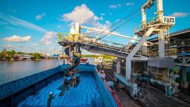 """PVCFC đạt danh hiệu """"Doanh nghiệp xuất khẩu uy tín năm 2020"""""""