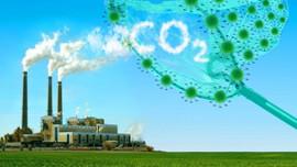 Nỗ lực giảm 7,3% tổng lượng phát thải khí nhà kính so với kịch bản phát triển thông thường