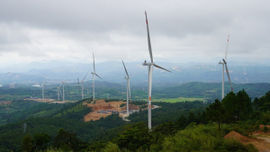 Hướng Hoá - Quảng Trị: Trồng cây, bảo vệ môi trường sinh thái khu vực các dự án điện gió