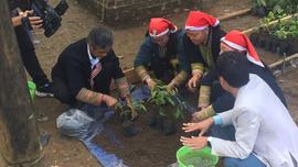 Tiếp cận nguồn gen và chia sẻ lợi ích tại Việt Nam - góp phần phát triển sinh kế cho người dân vùng cao Sa Pa
