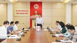 Quảng Ninh: Nâng cao chất lượng, tiến độ công tác xây dựng giá đất