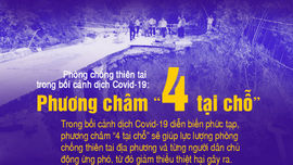 """Infographic: Phương châm """"4 tại chỗ"""" phòng chống thiên tai trong bối cảnh dịch Covid-19"""
