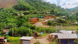 Mường Nhé (Điện Biên): Đồng bào ổn định cuộc sống trên vùng đất mới