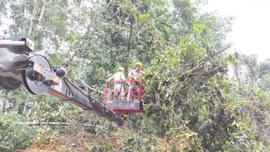 Điện lực Thành phố Điện Biên Phủ xử lý khắc phục sự cố sau mưa bão