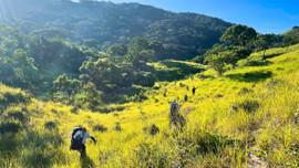 Khám phá rừng khô Núi Chúa