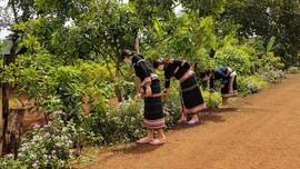 Chư Sê – Gia Lai: Nhân rộng và phát huy hiệu quả các Tổ tự quản bảo vệ môi trường