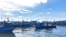 Thừa Thiên- Huế: Kêu gọi tàu thuyền vào nơi trú ẩn an toàn để tránh áp thấp nhiệt đới