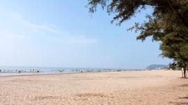 Quy hoạch khu dịch vụ cầu cảng và du lịch sinh thái 483 ha tại TP Sầm Sơn