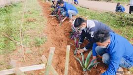 Mai Sơn (Sơn La): Hưởng ứng Chiến dịch làm cho thế giới sạch hơn 2021