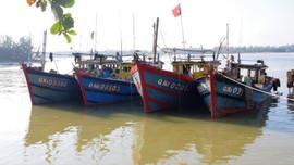 Quảng Nam: Bộ đội biên phòng phát hiện 4 tàu giã cào khai thác trái phép