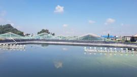 Thanh Hóa: Điều chỉnh Dự án khu du lịch sinh thái biển và nghỉ dưỡng Flamingo Linh Trường