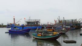 Quảng Trị: Nghiêm cấm tàu thuyền ra khơi từ 12/10 để ứng phó bão số 8