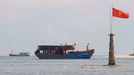 Quảng Bình: Nhiều tàu cá ngư dân lắp đặt thiết bị GSHT bị sự cố khi ra khơi