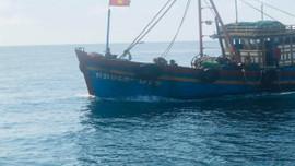 Bình Định: Xử phạt hơn 342 triệu đồng về hành vi khai thác thủy sản bất hợp pháp
