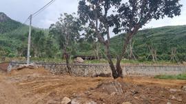Phú Yên:  Xuất hiện tình trạng san ủi đất rừng trái phép