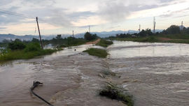 Bình Thuận: Chủ động phòng chống thiên tai, ứng phó sự cố môi trường