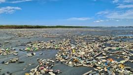 Rác thải nhựa bủa vây rừng ngập mặn ở Vịnh Manila