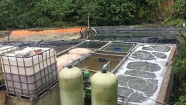 Phù Yên (Sơn La): Tăng cường bảo vệ môi trường trong chế biến nông sản