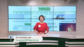 Bản tin truyền hình Tài nguyên và Môi trường số 41 năm 2019 (số 107)