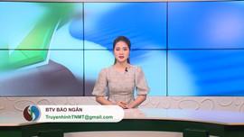 Bản tin Truyền hình Tài nguyên và Môi trường số 7 năm 2020 (số 124)