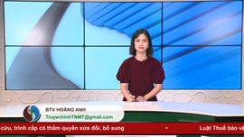 Bản tin Truyền hình Tài nguyên và Môi trường số 32/2020 (số 149)