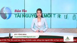 Bản tin Truyền hình Tài nguyên và Môi trường số 41/2020 (số 158)
