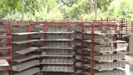 Sản xuất gạch không nung giảm thiểu ô nhiễm môi trường