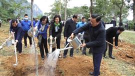 """Lan tỏa hành trình đặc biệt """"Vì triệu cây vươn cao cho một Việt Nam xanh"""""""