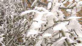Lần đầu tiên cảnh báo mưa tuyết trong mùa đông năm nay