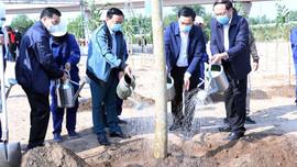 Bộ TN&MT và UBND TP.Hà Nội phát động Tết trồng cây Xuân Tân Sửu