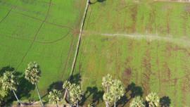 Sớm hoàn thiện Thông tư hướng dẫn thi hành Luật đất đai 2013